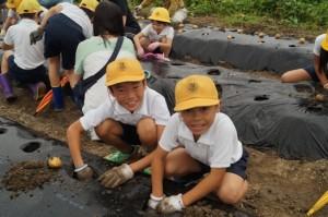 JA 海部東農業協同組合(あまひがし) -季節の野菜を育てて食べよう