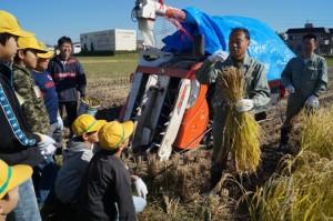 JA 海部東農業協同組合(あまひがし) -小学校児童がお米の大切さを学ぶ
