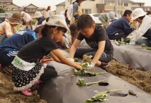 JA 海部東農業協同組合(あまひがし) -土とふれあって農業の楽しさと大切さを学ぶ