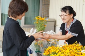 JA 海部東農業協同組合(あまひがし) -お客様感謝デーで来場者に花の苗をプレゼント