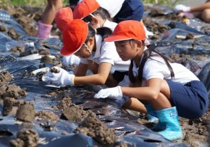 JA 海部東農業協同組合(あまひがし) -土と触れ合い農業の大切さを