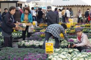 JA 海部東農業協同組合(あまひがし) -各支店で感謝祭・グリーンプラザで大売出しを行う