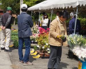 JA 海部東農業協同組合(あまひがし) -お値打ちに花・苗を販売