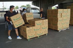 JA 海部東農業協同組合(あまひがし) -大治町モロヘイヤ部会 市場への出荷作業がピークを迎える
