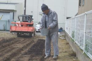 JA 海部東農業協同組合(あまひがし) -大治町農業振興会 大治小学校農業体験に向けた 赤シソの播種作業