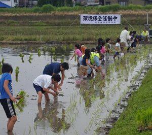 JA 海部東農業協同組合(あまひがし) -稲作体験 学区子ども会の田植えに協力