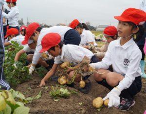 JA 海部東農業協同組合(あまひがし) -農業体験 食と農の大切さ学ぶ
