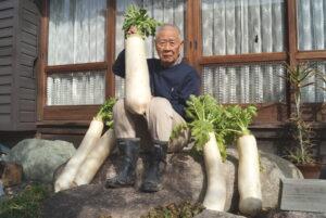 JA 海部東農業協同組合(あまひがし) -思わず仰天! 超特大の大根を収穫
