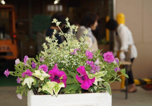 JA 海部東農業協同組合(あまひがし) -女性部 適正管理で長く楽しもう!