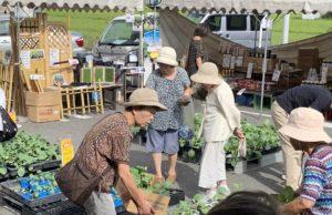 JA 海部東農業協同組合(あまひがし) -グリーンプラザ 秋の大感謝祭