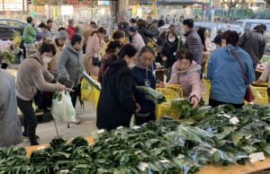JA 海部東農業協同組合(あまひがし) -大治支店・甚目寺支店 日頃の感謝を込めて感謝祭