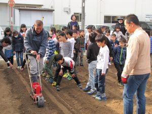 JA 海部東農業協同組合(あまひがし) -大治小学校 農業体験 冬の葉物野菜を栽培開始