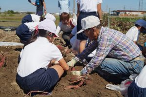 JA 海部東農業協同組合(あまひがし) -農業体験 収穫の時、来たる