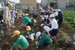 JA 海部東農業協同組合(あまひがし) -農業体験 土とふれあい収穫体験