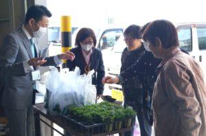 JA 海部東農業協同組合(あまひがし) -お客様感謝デー 来店者に季節の花苗をプレゼント