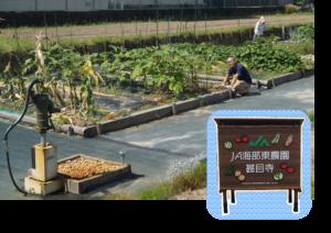 JA 海部東農業協同組合(あまひがし) -JA海部東農園 甚目寺 開園から1 周年